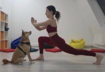 Pet's yoga practice – практика с участием собаки-терапевта